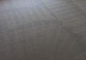 clean-carpet-in-room