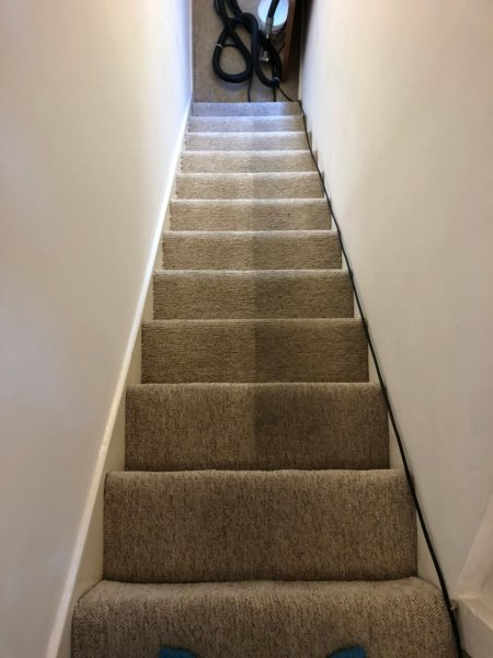 Image result for http://newportcoastcarpetcleaners.com