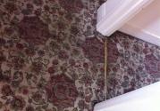 clean-hallway-carpet