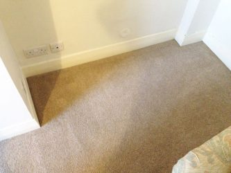 home-carpet-cleaning-company