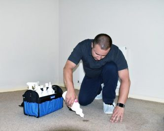 carpet stain removal process