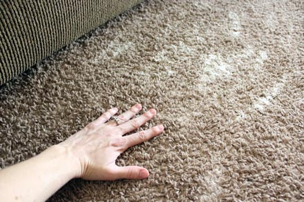 baking soda eco carpet cleaning