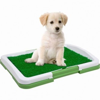pet toilet cleaning